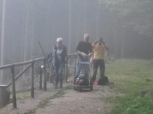 Geier im Nebel