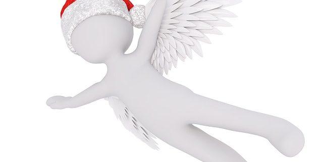 Weihnachtsflieger